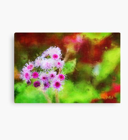 Wild and Crazy Ageratum! Canvas Print