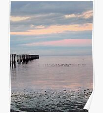 Dungeness Bay Old Pier Poster