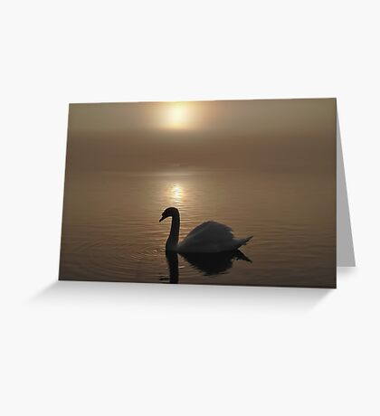 Swan Lake in the Mist Greeting Card