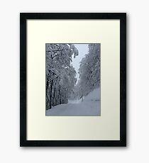 Nozawa Onsen Framed Print