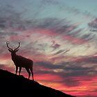 Deer at Dawn by David Alexander Elder