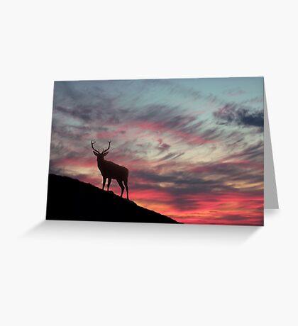 Deer at Dawn Greeting Card
