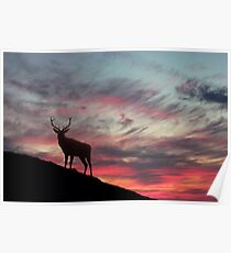 Deer at Dawn Poster
