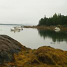 peaceful morning Bar Harbor by telley20