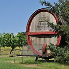 cape wine by telley20