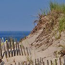 dune 1 by telley20