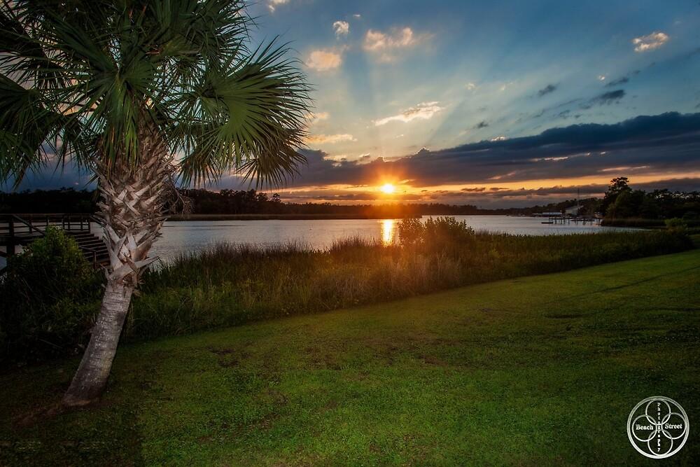 Natural Florida  by BeachStreet