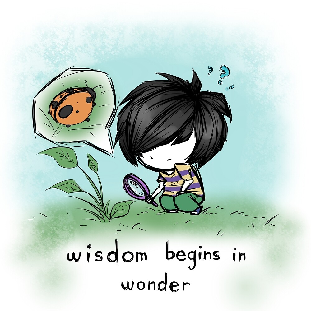 Wisdom Begins in Wonder by FuyuNi