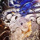 Ice Art by chrstnes73