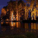 Over the lake one night by Mark Braham