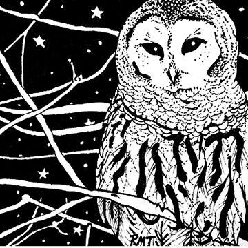 Snowy Night by Art-trainer