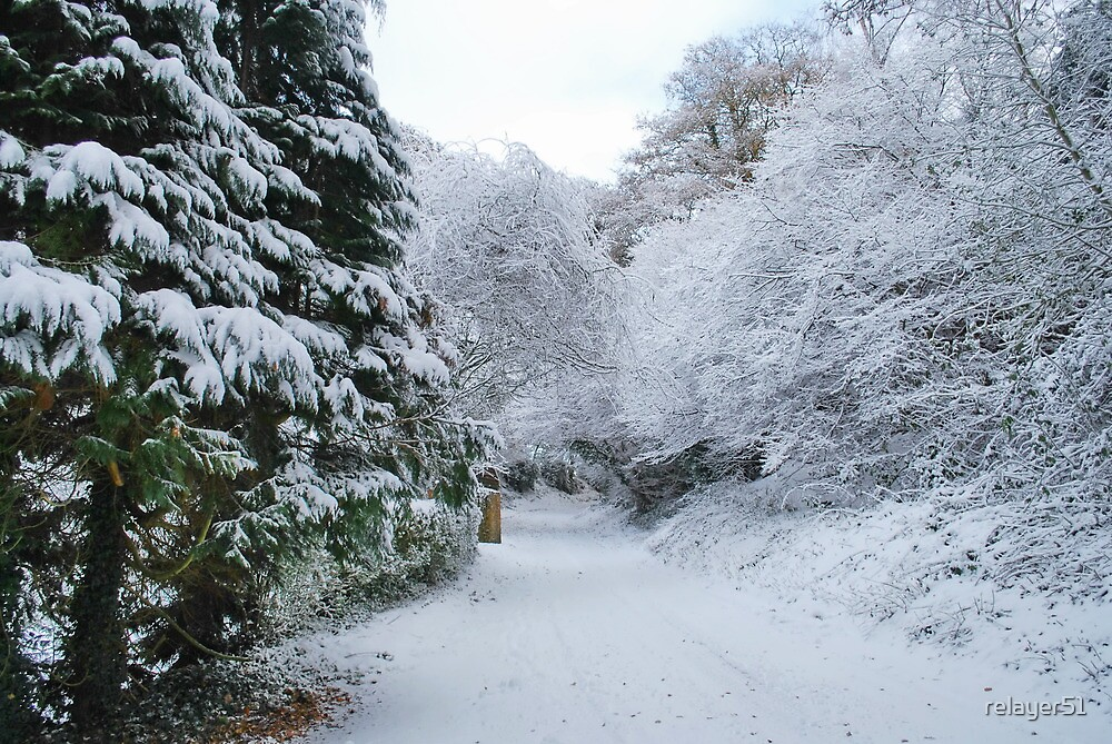 Winter up Frensham Lane by relayer51