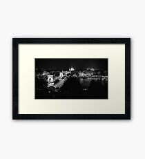 The View from Buda Castle Framed Print