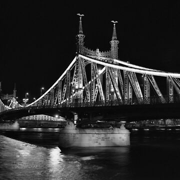 Liberty Bridge, Budapest by rodneyj46