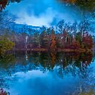 Reflections by Thomas Eggert