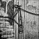 Locked In by Jeffrey  Sinnock