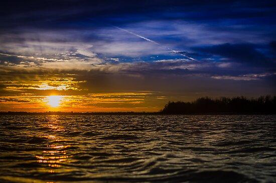 Morning Sun by Douglas Hamilton