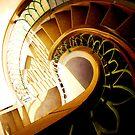 The Ammonite Staircase by Imi Koetz