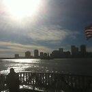 Vue de la Nouvelle Orleans Sur Le Fleuve Mississippi by travisferrell