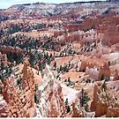 Bryce Canyon National Park by Laura Puglia