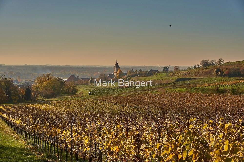Burkheim village. Kaiserstuhl by Mark Bangert