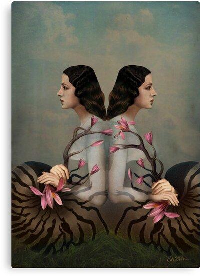 Cocoon 2 by Catrin Welz-Stein