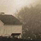 foggy farmstead 2 by Bruce  Dickson