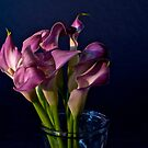 Bunch Of Calla Lilies by Jeffrey  Sinnock