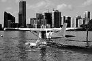 Miami Seaplane by Bill Wetmore