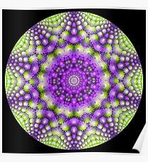 Broccoli Kaleidoscope   Poster