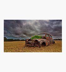 """Green Energy"" Photographic Print"