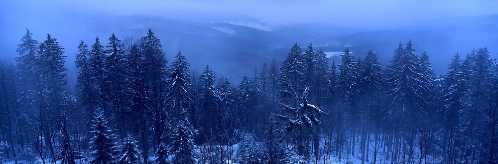Blue Winter Landscape by intensivelight
