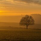 Dawn over Woodborough. by naranzaria