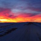 The Road Home by lorilee