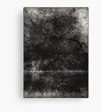 trunks Canvas Print