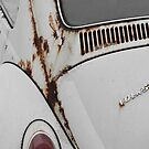 Rusty Bug by rosaliemcm