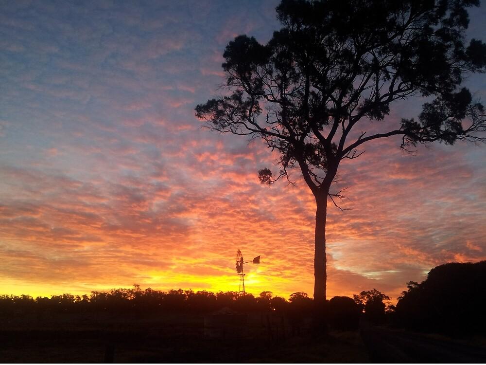Farm sunset by Pollysirena