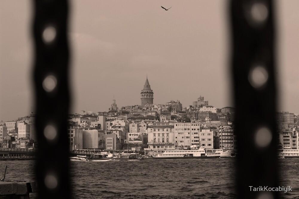 Galata Tower ,Istanbul/TURKEY by TarikKocabiyik