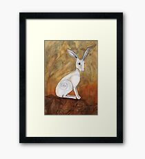 White Hare at Sunset Framed Print