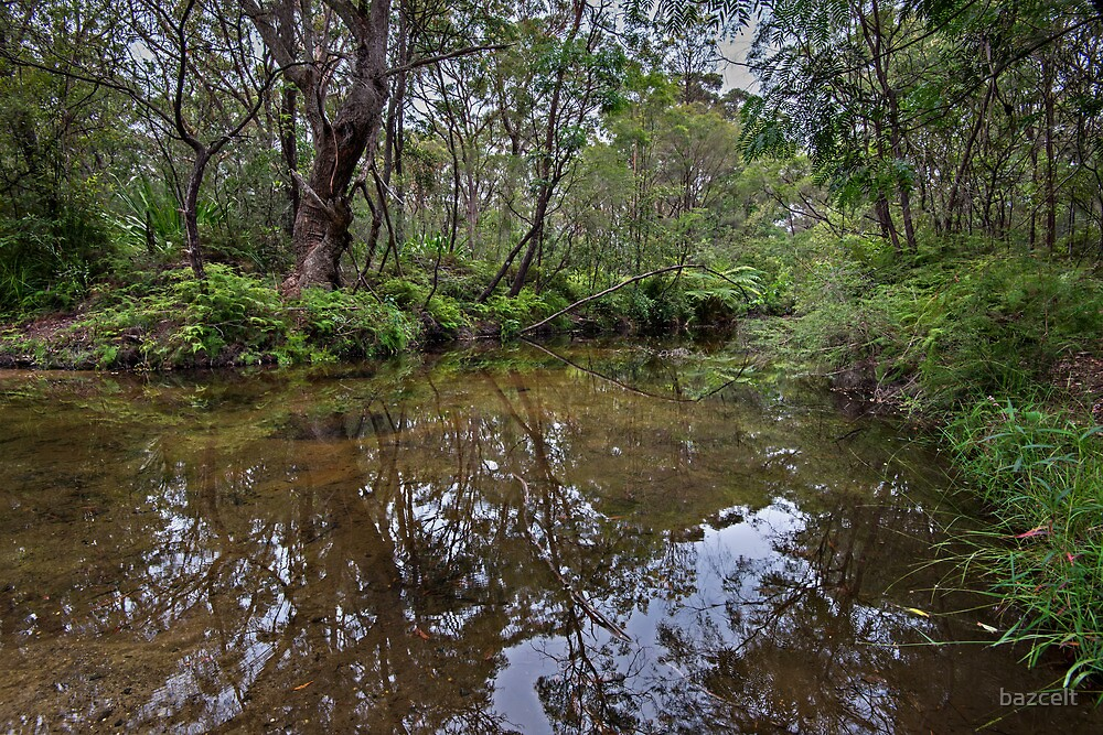 Somersby River Reflections by bazcelt