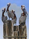 Pelicans Five by Phyllis Beiser