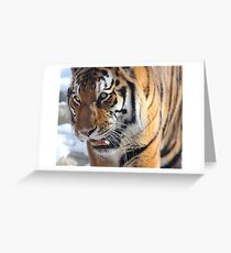 Richard Parker Greeting Card