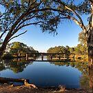 The Tranquil Bogan River  by David Haworth