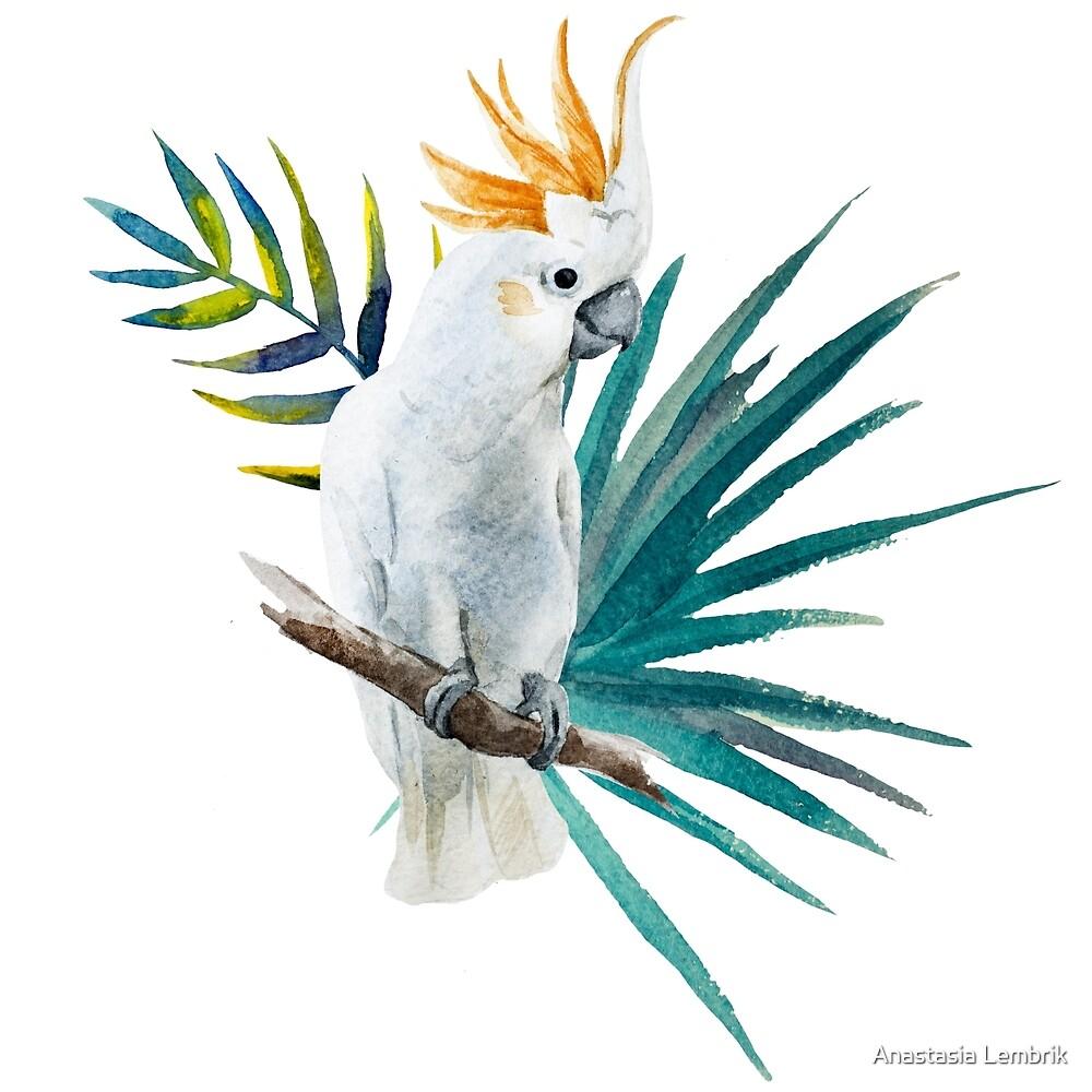 watercolor parrot by Anastasia Lembrik