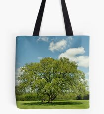 A Summers Day Tote Bag