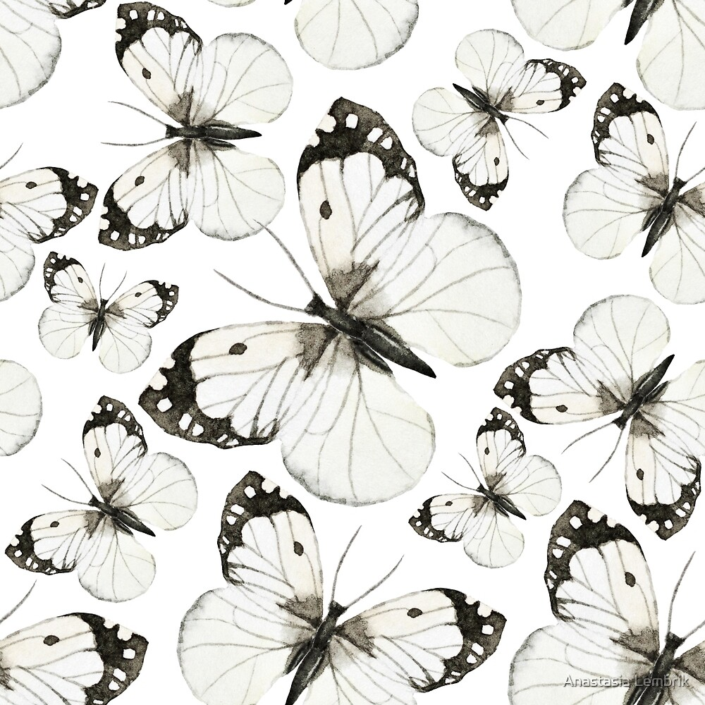watercolor butterfly black and white by Anastasia Lembrik