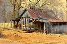 Quaint Little Barn by NatureGreeting Cards ©ccwri