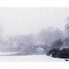 Central Park Winter by Jessica Jenney