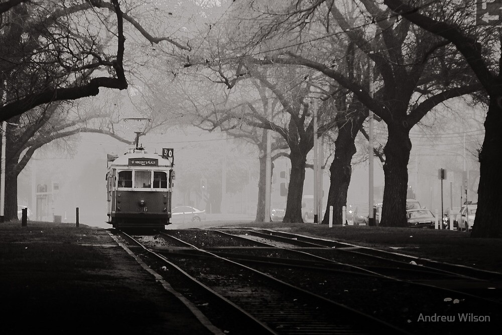 Tram Under the Elms by Andrew Wilson