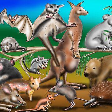 Australian Marsupials by davidfraser